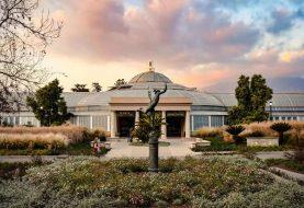 中央美术学院中西美术教育比较研究—全球美育行2020洛杉矶站